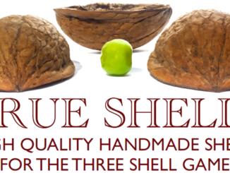 true shells matteo filippini 2016